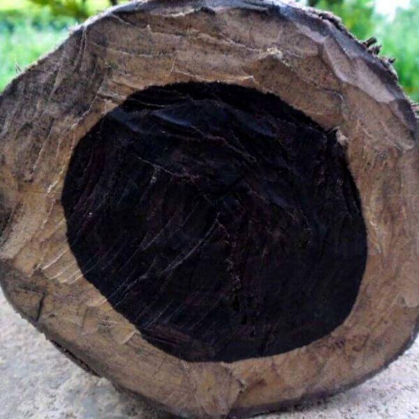 laguiole bois ébène noir